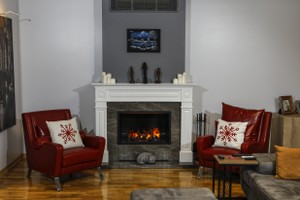 Dimplex Electric Fireplaces - E 135