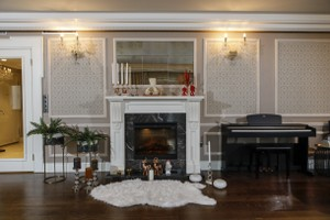 Dimplex Electric Fireplaces - E 142