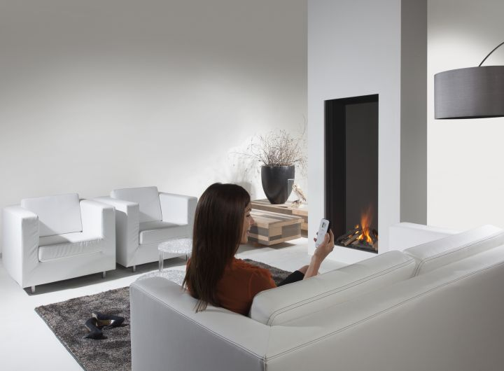 Element4 Natural Gas Fireplaces - SKY L F