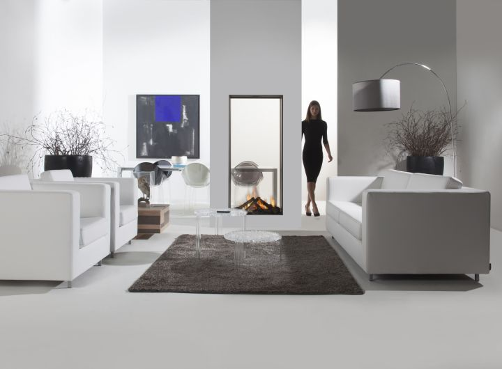 Element4 Natural Gas Fireplaces - SKY L T