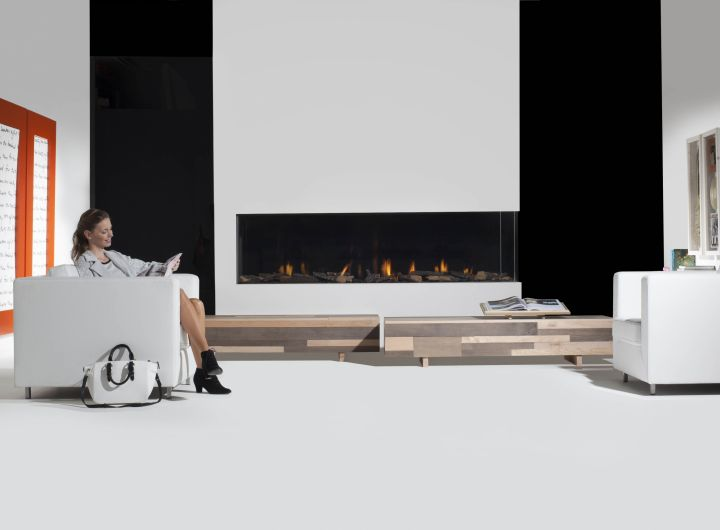 Element4 Natural Gas Fireplaces - Bidore 240 H