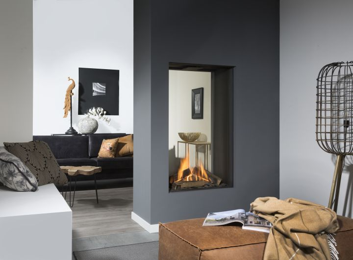 Element4 Natural Gas Fireplaces - SKY T M