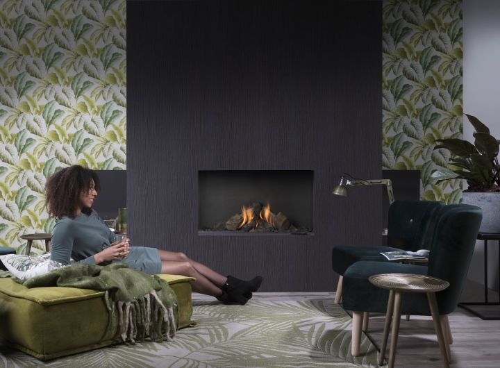 Element4 Natural Gas Fireplaces - Summum 100 F